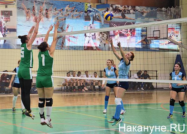волейбол|Фото: Накануне.RU