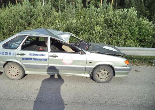 ДТП лоси|Фото: ГИБДД Свердловской области