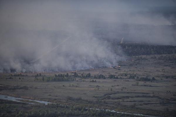 лесные пожары, ЯНАО|Фото:vk.com