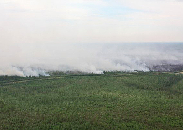 тушение пожаров на Ямале|Фото: 89.mchs.gov.ru