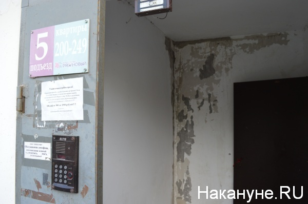 сырость на стенах в подъезде Фото:Накануне.RU