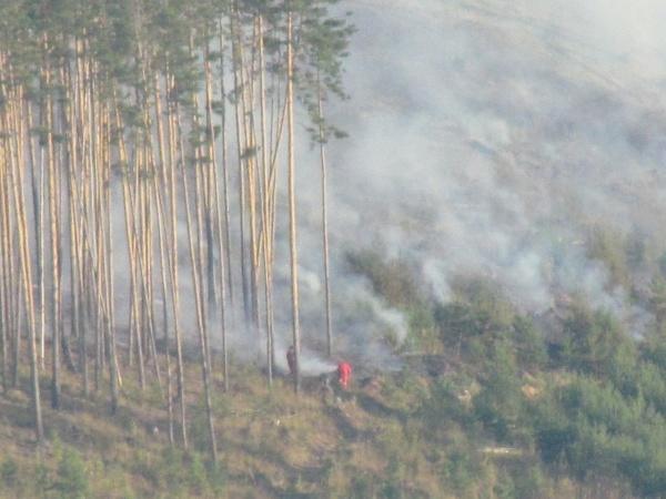 лесной пожар, Паранино, Усть-Катав,|Фото: vk.com