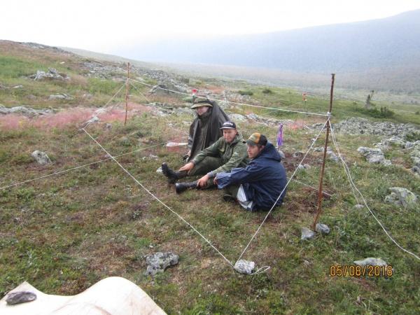 перевал Дятлова, экспедиция|Фото:https://vk.com/antonsboev
