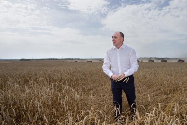 Борис Дубровский, сельское хозяйство, уборочная кампания,(2016)|Фото: пресс-служба губернатора Челябинской области