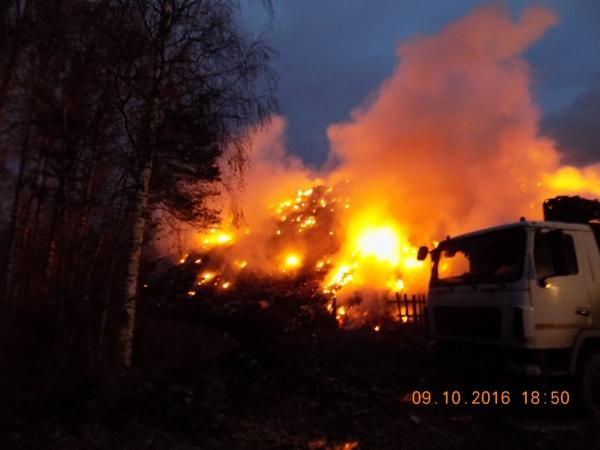 пожар, ТБО, тление, свалка, полигон Фото:https://vk.com/vp_news