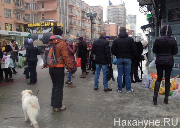 Екатеринбург, сбор подписей, митинг, пикет за ужесточение уголовной ответственности в отношении живодеров|Фото: Накануне.RU