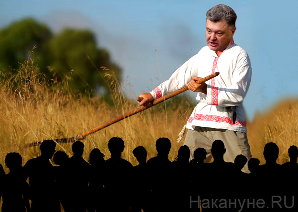 Украина, флаг, США Фото: