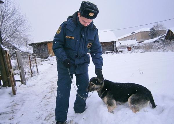 Верхотурье, собака, Рассомаха, пожар|Фото: МЧС по Свердловской области