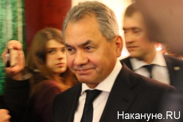 Сергей Шойгу(2016)|Фото: Накануне.RU