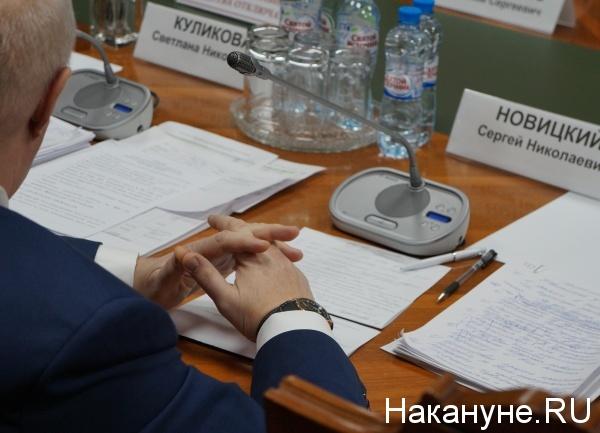 Сергей Новицкий, корпорация развития, заседание попечительского совета Фото: