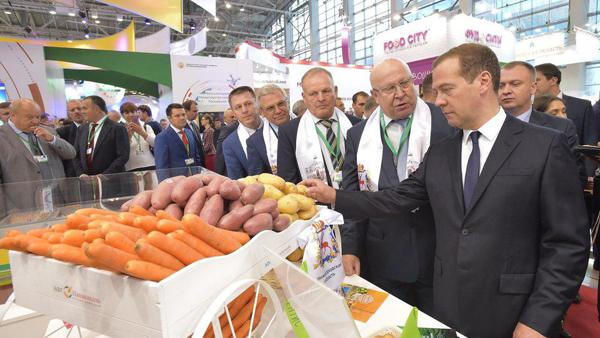 Дмитрий Медведев, сельское хозяйство(2017)|Фото: пресс-служба Правительства РФ