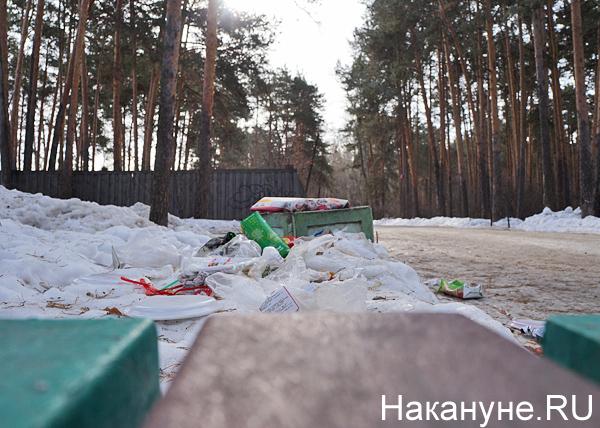 Шарташский лесопарк, мусор|Фото: Накануне.RU