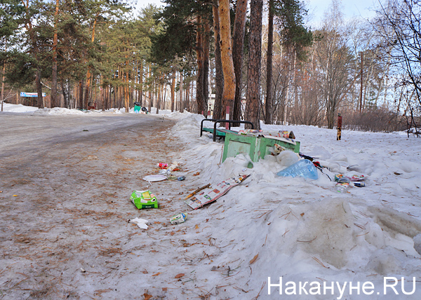 Шарташский лесопарк, мусор(2017)|Фото: Накануне.RU
