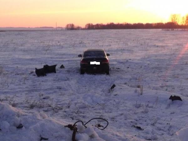 Сафакулевский район, авария, Ниссан|Фото:ГИБДД УМВД России по Курганской области