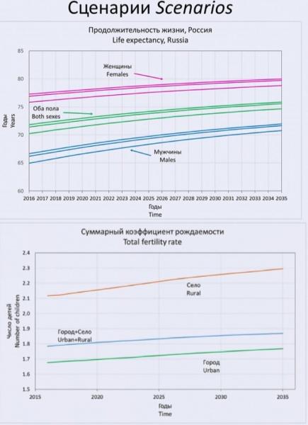 Сценарии, продолжительность жизни, коэффициент рождаемости, демография, россия|Фото: Евгений Чернышёв