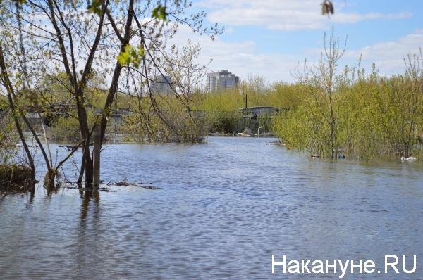 половодье паводок наводнение(2017)|Фото: Фото:Накануне.RU