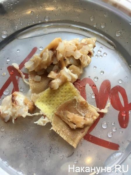 пластырь, еда, Мега-блин, Курган|Фото:Накануне.RU