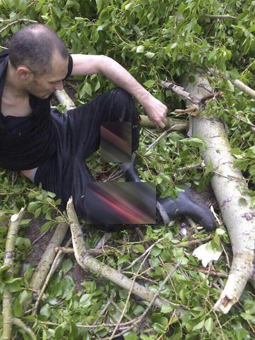 пострадавший, ураган, дерево|Фото: vk.com/idarseniy_larin