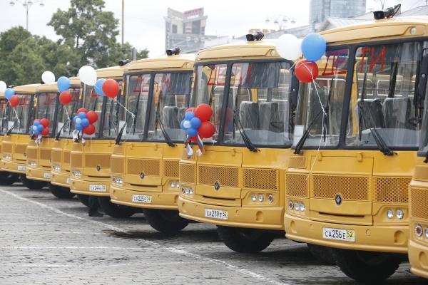 школьные автобусы, дети|Фото: Департамент информационной политики губернатора