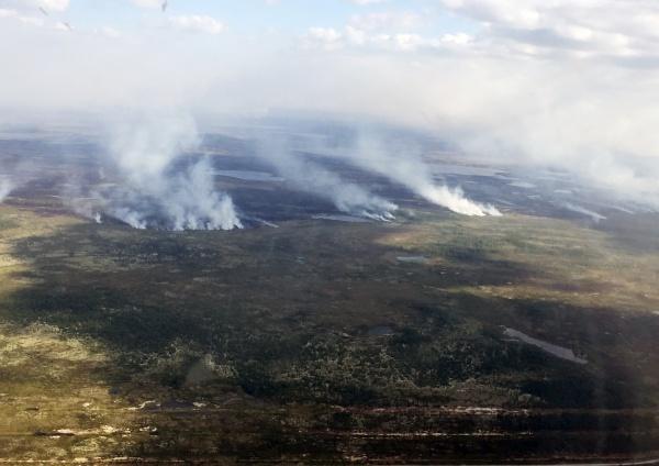 лесной  пожар(2017)|Фото: пресс-служба губернатора ЯНАО