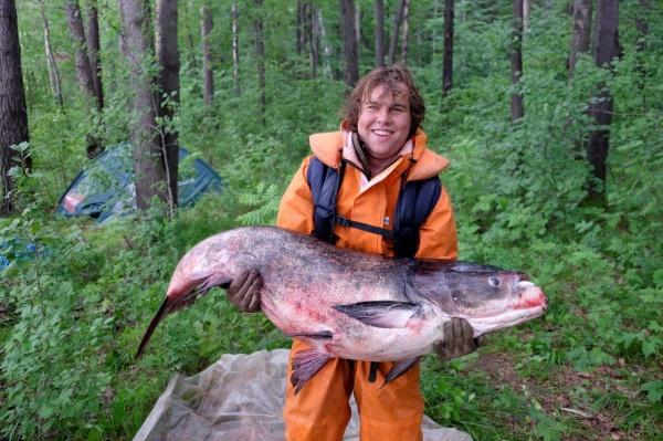 толстолобик самая крупная рыба Свердловской области|Фото: ДИП губернатора Свердловской области