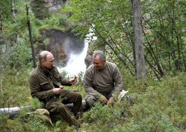 Владимир Путин, Сергей Шойгу(2017)|Фото: Alexey NIKOLSKY / AFP