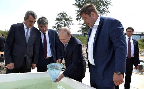 Владимир Путин перед церемонией выпуска мальков омуля в посёлке Танхой|Фото: kremlin.ru