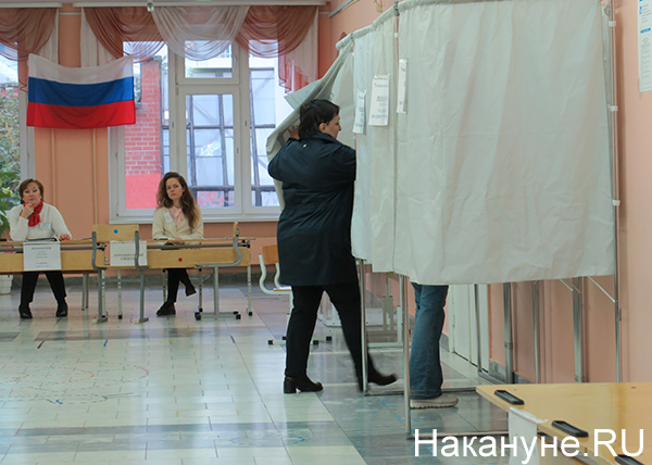 выборы, голосование, кабинки для голосования|Фото: Накануне.RU
