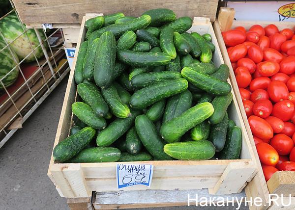 овощи, цены, огурцы|Фото: Накануне.RU