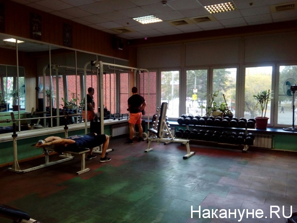 спортшкола Атлет, инвестор вывез оборудование,|Фото: Накануне.RU