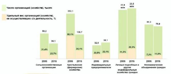 Всероссийская сельскохозяйственная перепись 2016, число организаций|Фото: Росстат