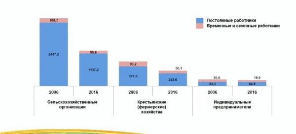 Численность работников сельского хозяйства, всероссийская сельскохозяйственная перепись|Фото: Росстат
