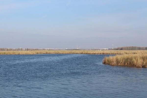 озеро, Смолино, Челябинск,|Фото: пресс-служба администрации Челябинска