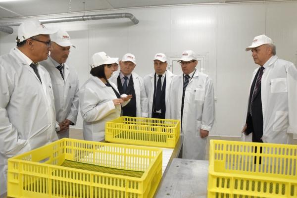 Абсолют-Агро, завод по переработке индейки, открытие Фото: admtyumen.ru