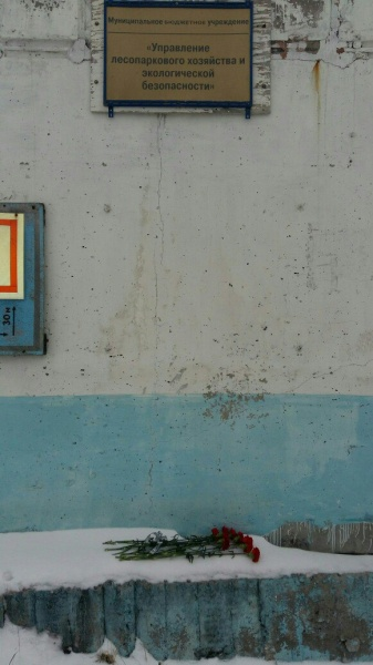 Две гвоздики товарищу Сталину, Сургут (7.11.17)|Фото: vk.com