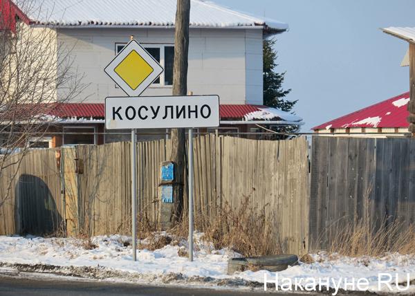 село Косулино, знак(2017)|Фото: Накануне.RU