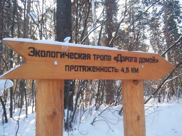указатель, зима, экотропа,пермский парк(2017) Фото:пресс-служба администрации Перми