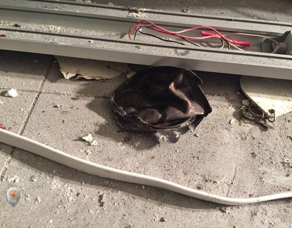 магазин, Санкт-Петербург, взрыв(2017)|Фото: Национальный антитеррористический комитет