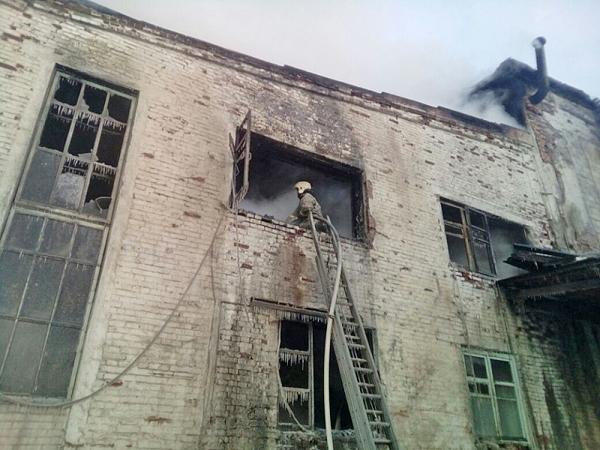 пожар на целлюлозно-бумажном комбинате в Новолялинском городском округе(2018)|Фото: ГУ МЧС по Свердловской области