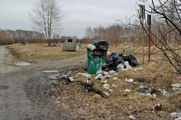 Шарташ, мусор(2018) Фото: Татьяна Тимохова, фейсбук