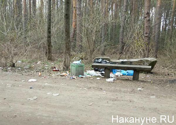 Шарташский лесопарк, Екатеринбург, мусор(2018)|Фото: Накануне.RU
