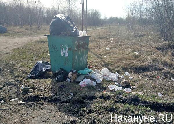 Шарташский лесопарк, Екатеринбург, мусор(2018) Фото: Накануне.RU