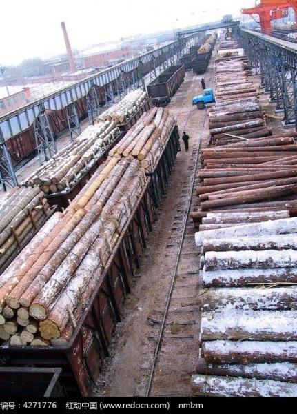 Импортированный из РФ лес на станции Маньчжурия, КНР(2018)|Фото: sucai.redocn.com