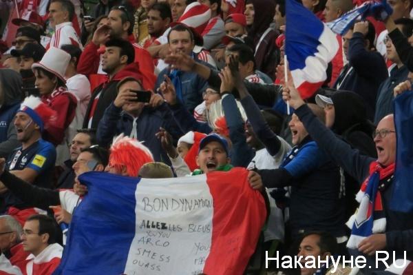 Болельщики сборной Франции(2018) Фото: nakanune.ru