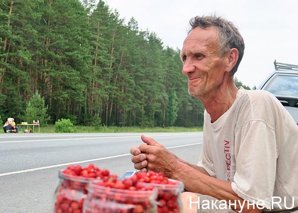 продавец ягод, трасса(2018)|Фото: Накануне.RU