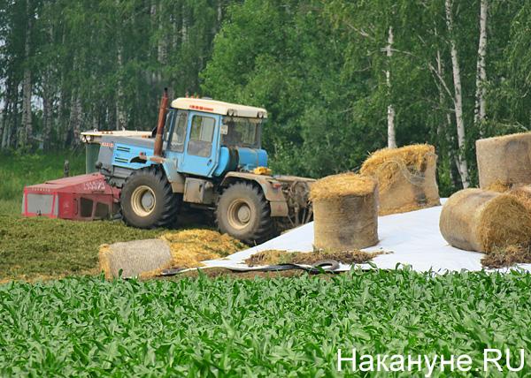 АПК, трактор(2018)|Фото: Накануне.RU