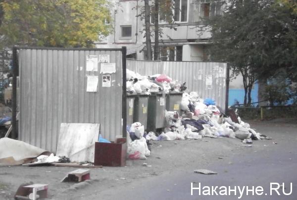 мусор, помойка, Челябинск(2018) Фото: Накануне.RU