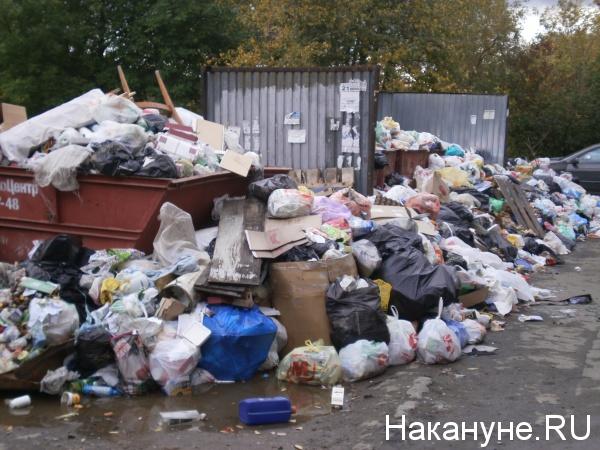 мусор, помойка, Челябинск(2018)|Фото: Накануне.RU