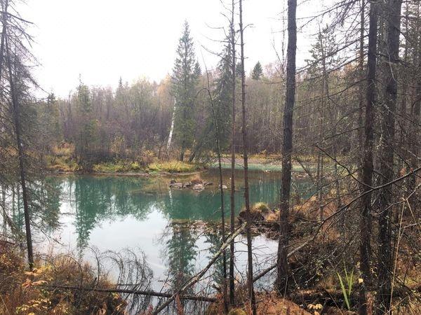 Тальтия, река, загрязнение, Ивдель(2018) Фото: Пресс-служба Прокуратуры Свердловской области