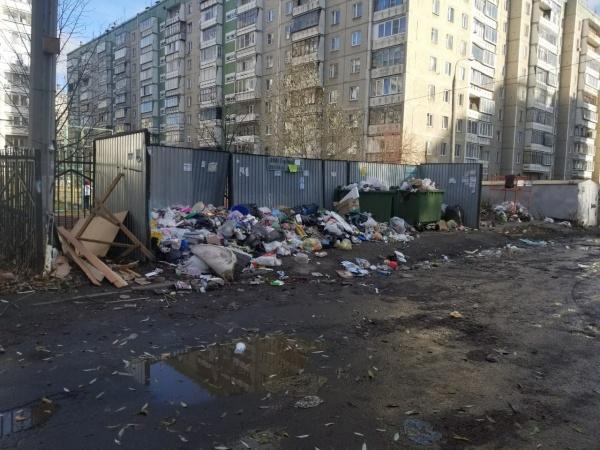 мусор, контейнерные площадки, Челябинск,(2018)|Фото: ОНФ Челябинская область
